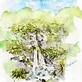 初夏のるり渓