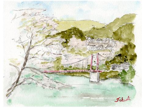桜満開の月ヶ瀬